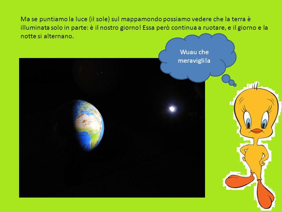 Ma se puntiamo la luce (il sole) sul mappamondo possiamo vedere che la terra è illuminata solo in parte: è il nostro giorno! Essa però continua a ruotare, e il giorno e la notte si alternano.