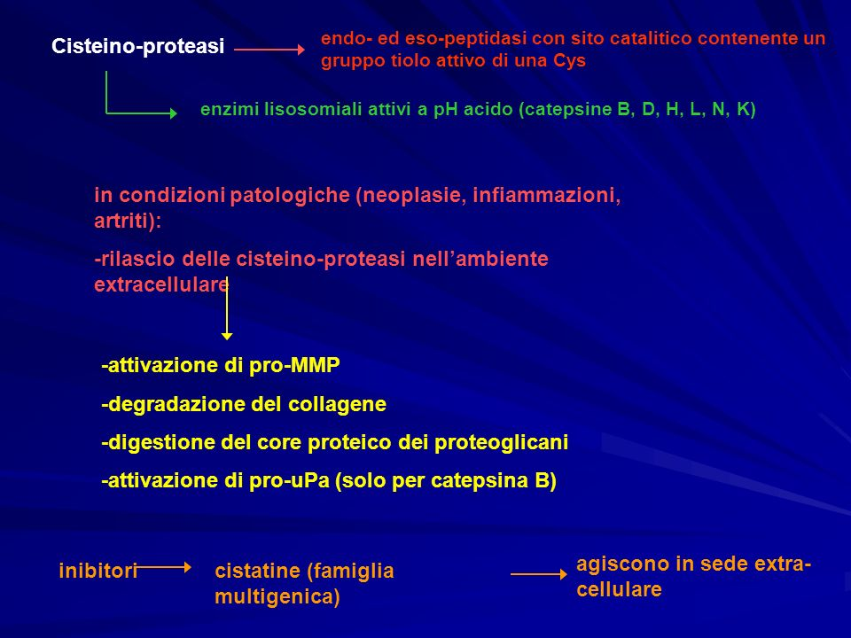in condizioni patologiche (neoplasie, infiammazioni, artriti):