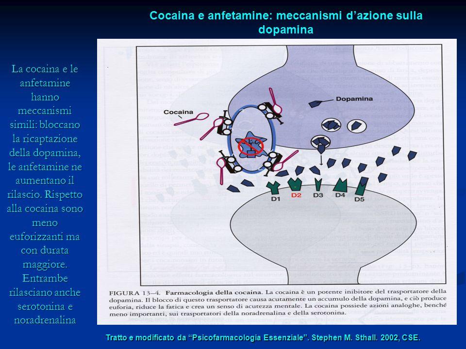 Cocaina e anfetamine: meccanismi d'azione sulla dopamina