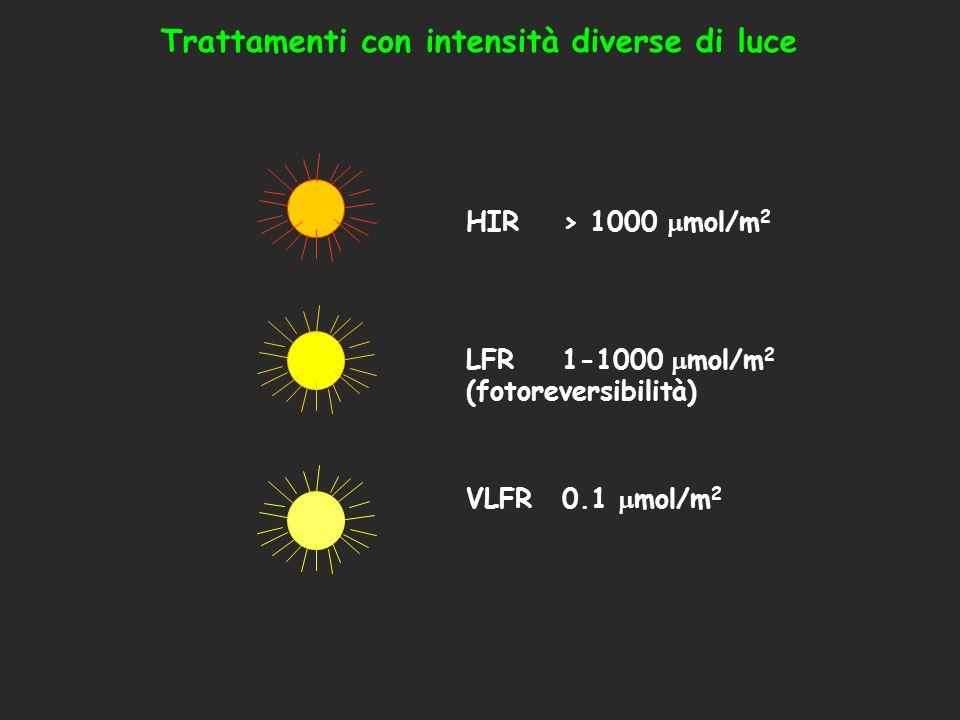 Trattamenti con intensità diverse di luce