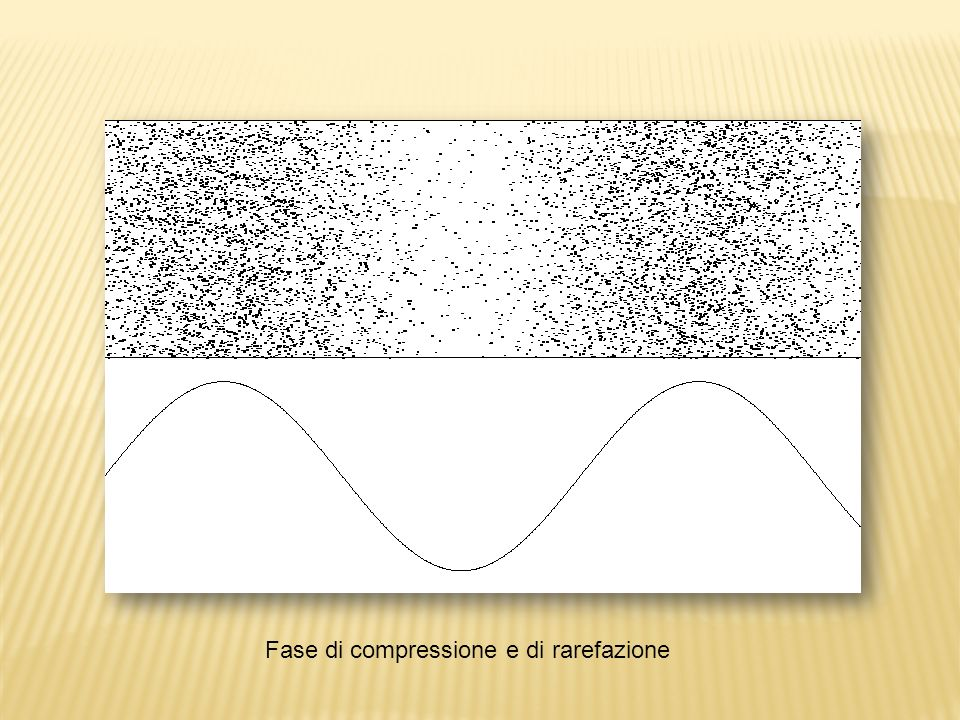 Fase di compressione e di rarefazione