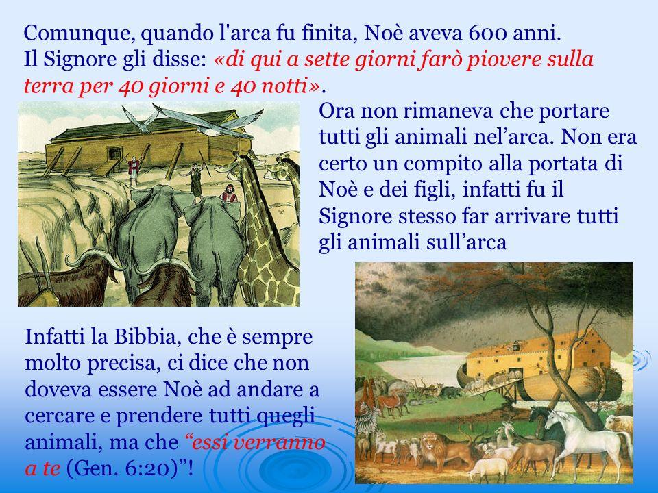 Comunque, quando l arca fu finita, Noè aveva 600 anni