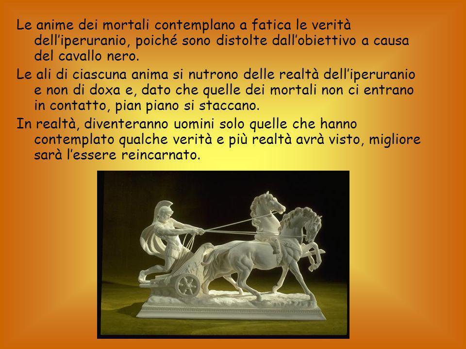 Le anime dei mortali contemplano a fatica le verità dell'iperuranio, poiché sono distolte dall'obiettivo a causa del cavallo nero.