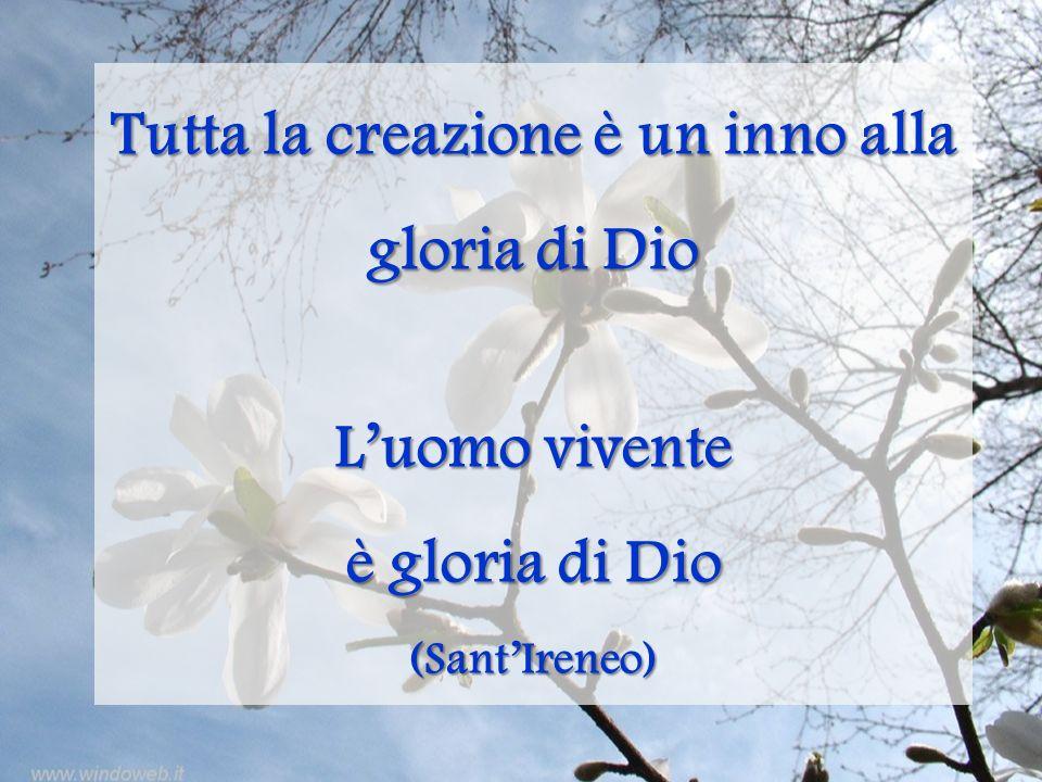 Tutta la creazione è un inno alla gloria di Dio