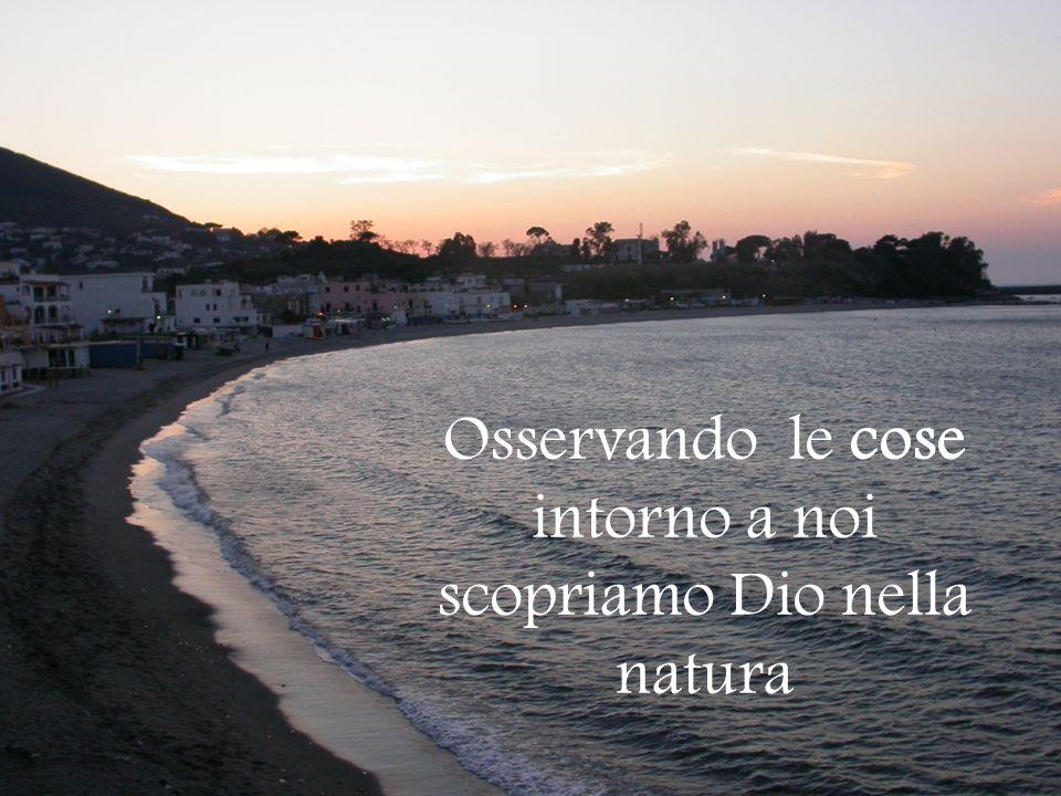 Osservando le cose intorno a noi scopriamo Dio nella natura