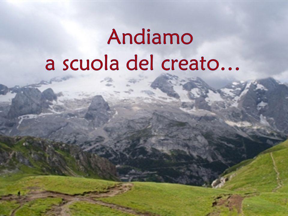 Andiamo a scuola del creato…