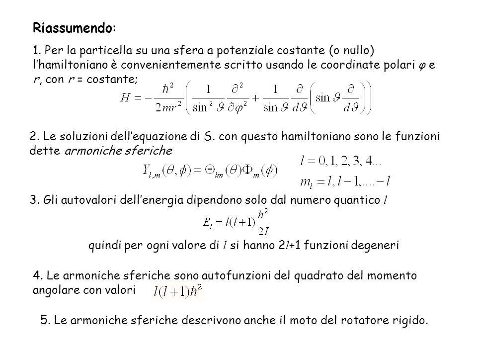 quindi per ogni valore di l si hanno 2l+1 funzioni degeneri