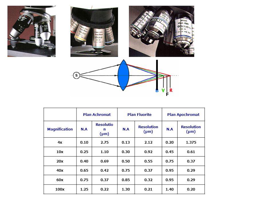 Plan Achromat Plan Fluorite Plan Apochromat Magnification N.A