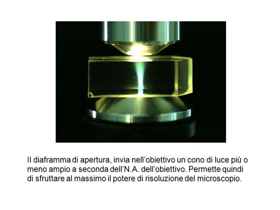 Il diaframma di apertura, invia nell'obiettivo un cono di luce più o meno ampio a seconda dell'N.A.