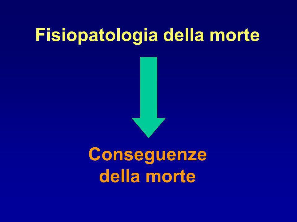 Fisiopatologia della morte Conseguenze della morte
