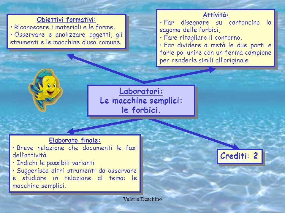 Laboratori: Le macchine semplici: le forbici.