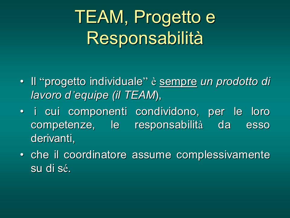 TEAM, Progetto e Responsabilità