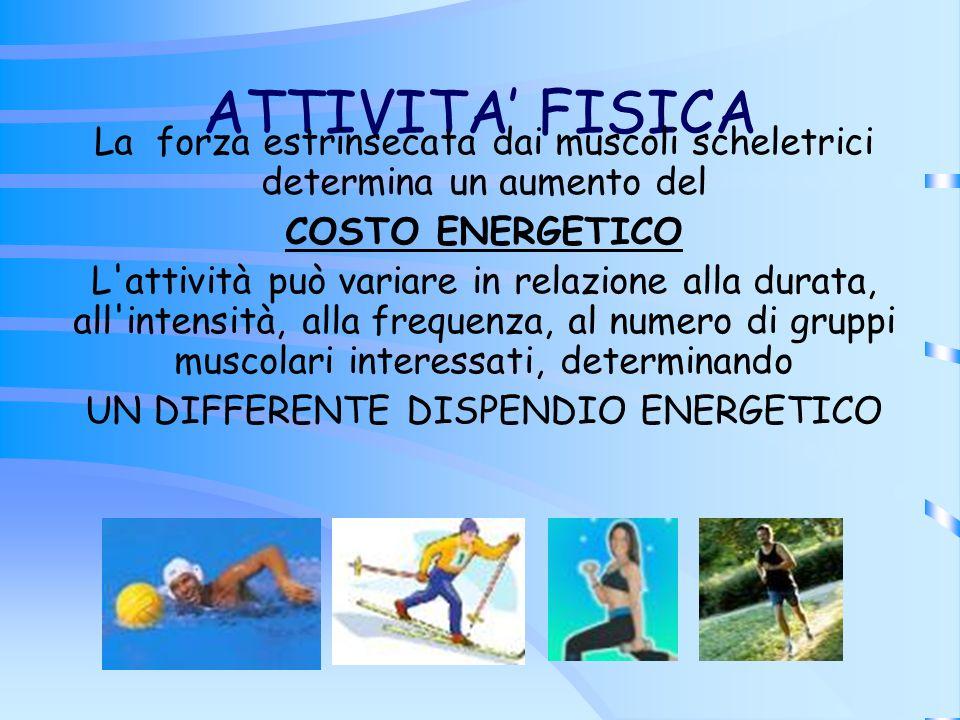 ATTIVITA' FISICA La forza estrinsecata dai muscoli scheletrici determina un aumento del. COSTO ENERGETICO.