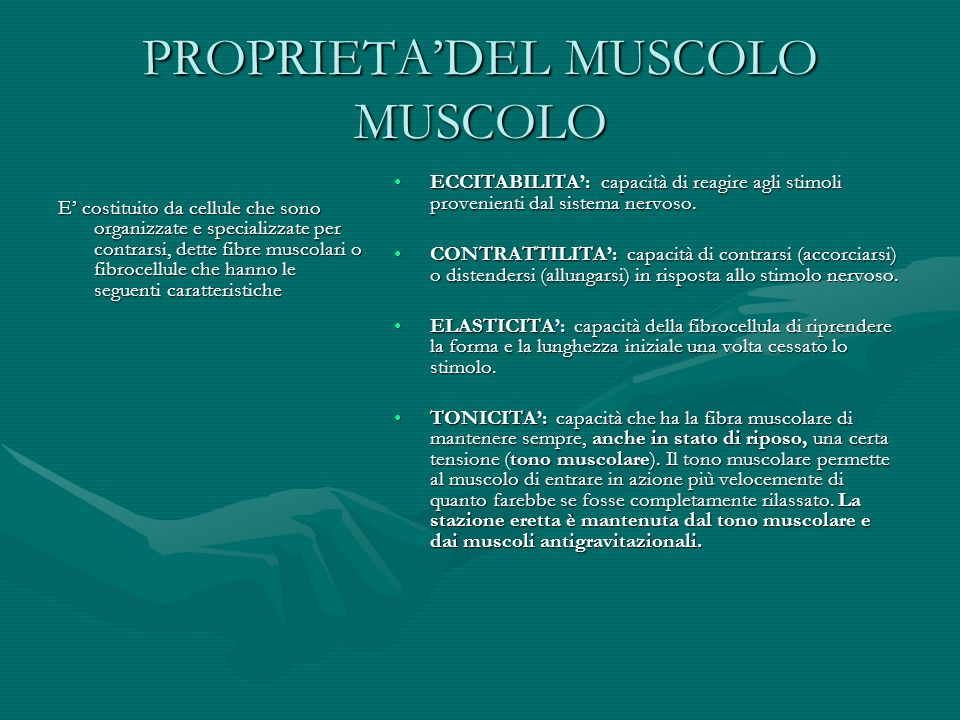 PROPRIETA'DEL MUSCOLO MUSCOLO