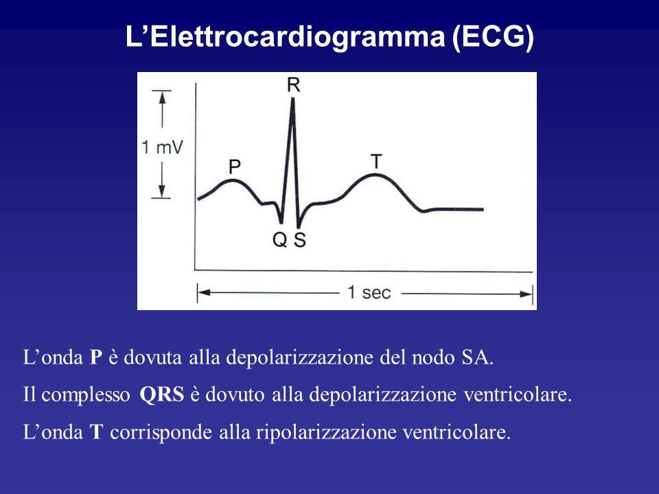 L'Elettrocardiogramma (ECG)