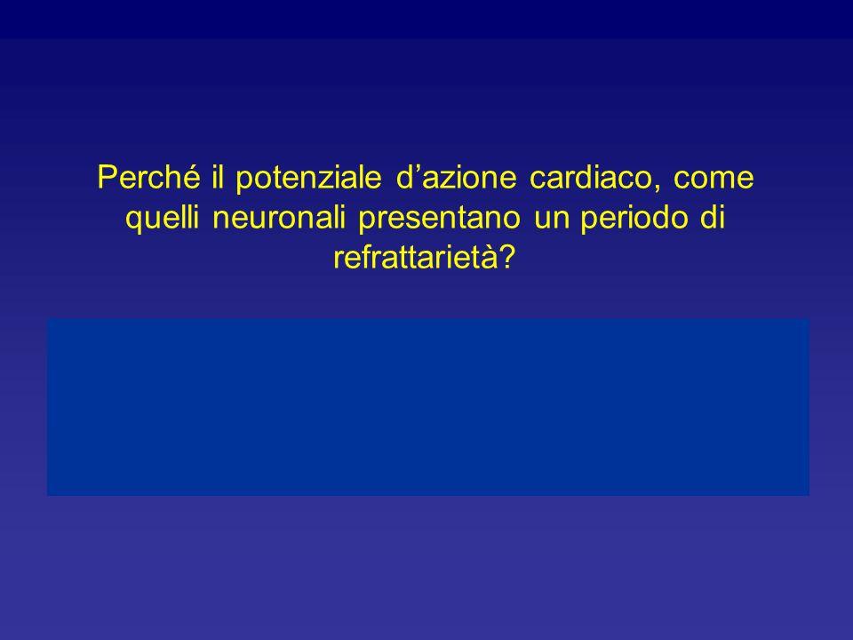 Perché il potenziale d'azione cardiaco, come quelli neuronali presentano un periodo di refrattarietà
