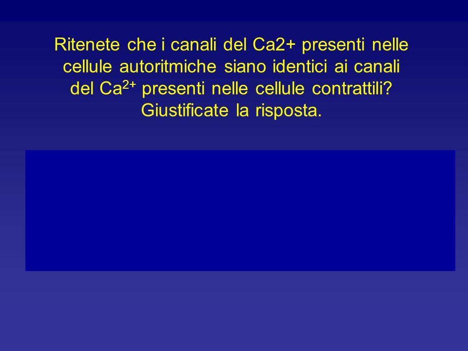 Ritenete che i canali del Ca2+ presenti nelle cellule autoritmiche siano identici ai canali del Ca2+ presenti nelle cellule contrattili Giustificate la risposta.