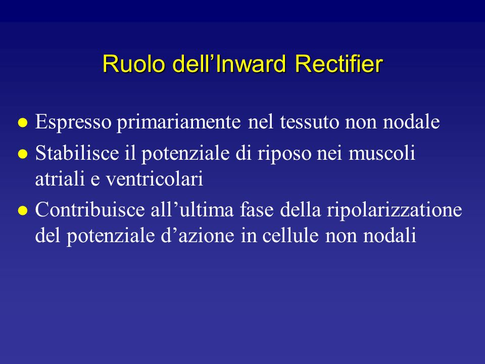 Ruolo dell'Inward Rectifier