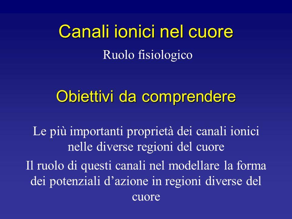 Canali ionici nel cuore
