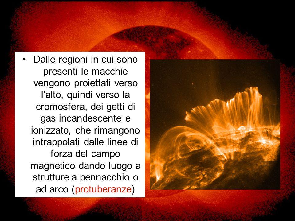 Dalle regioni in cui sono presenti le macchie vengono proiettati verso l'alto, quindi verso la cromosfera, dei getti di gas incandescente e ionizzato, che rimangono intrappolati dalle linee di forza del campo magnetico dando luogo a strutture a pennacchio o ad arco (protuberanze)
