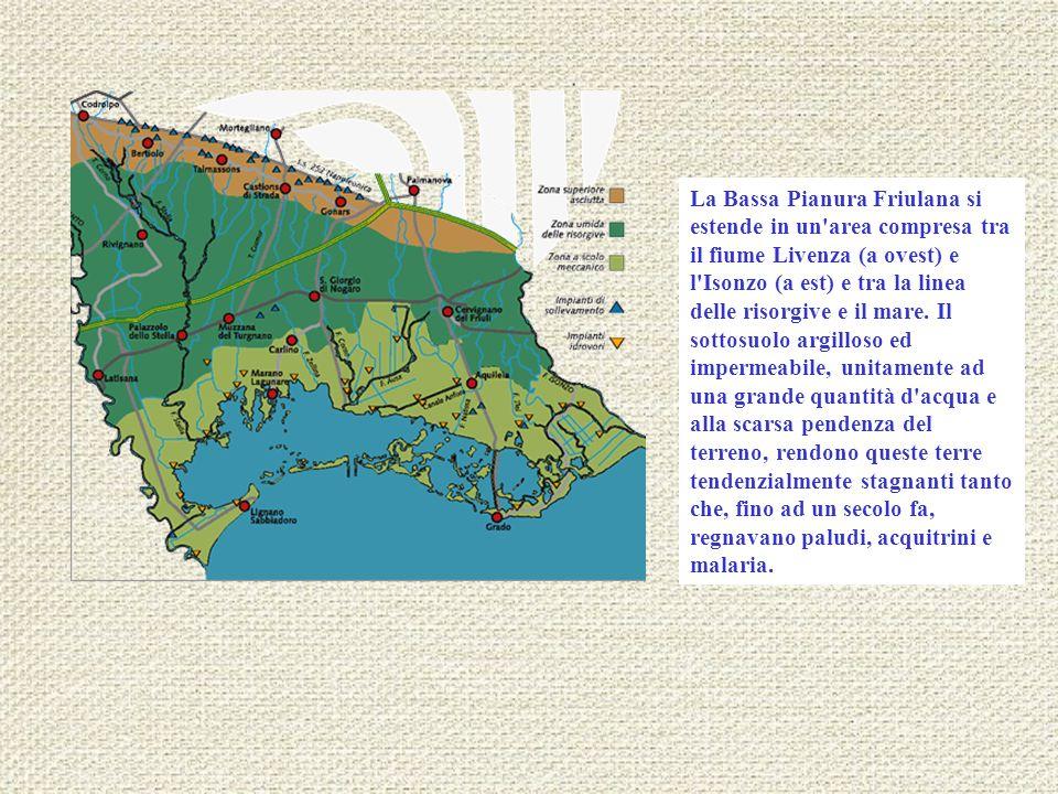 La Bassa Pianura Friulana si estende in un area compresa tra il fiume Livenza (a ovest) e l Isonzo (a est) e tra la linea delle risorgive e il mare.