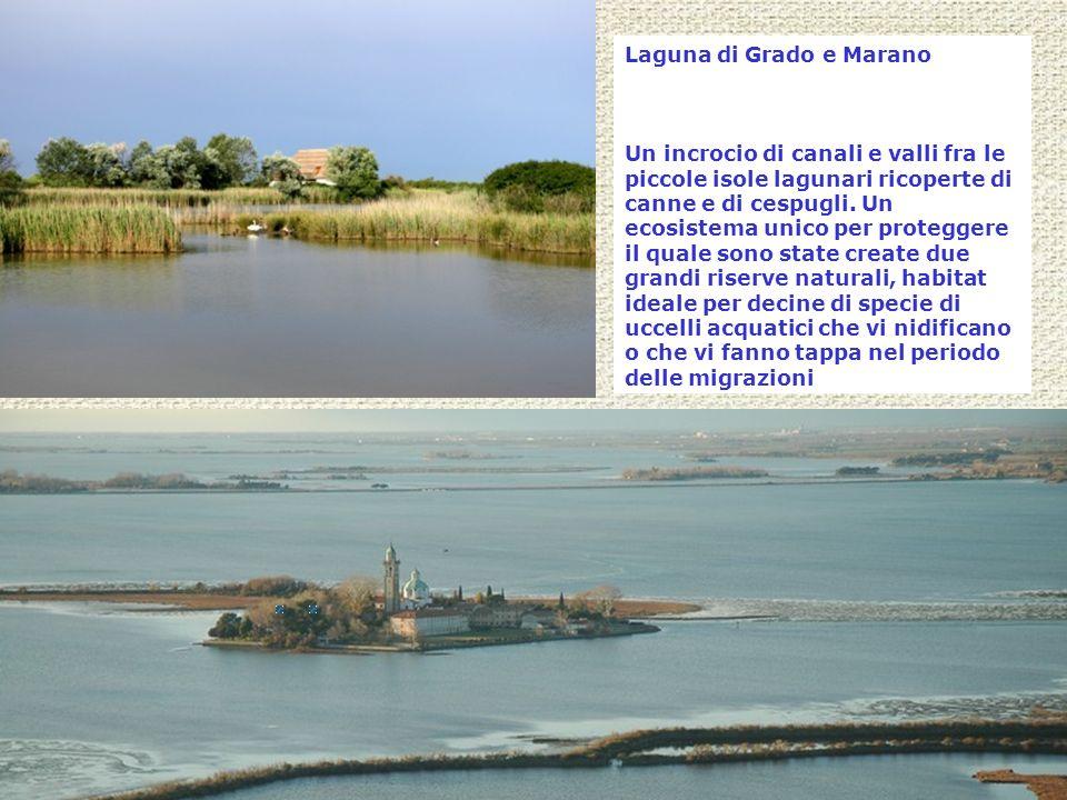 Laguna di Grado e Marano