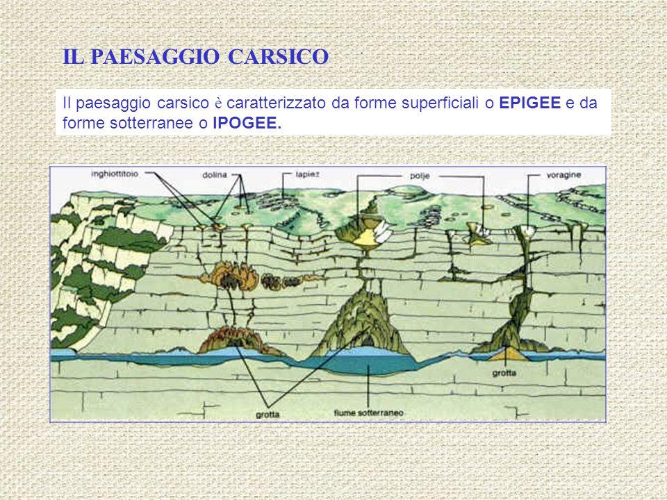IL PAESAGGIO CARSICO Il paesaggio carsico è caratterizzato da forme superficiali o EPIGEE e da forme sotterranee o IPOGEE.