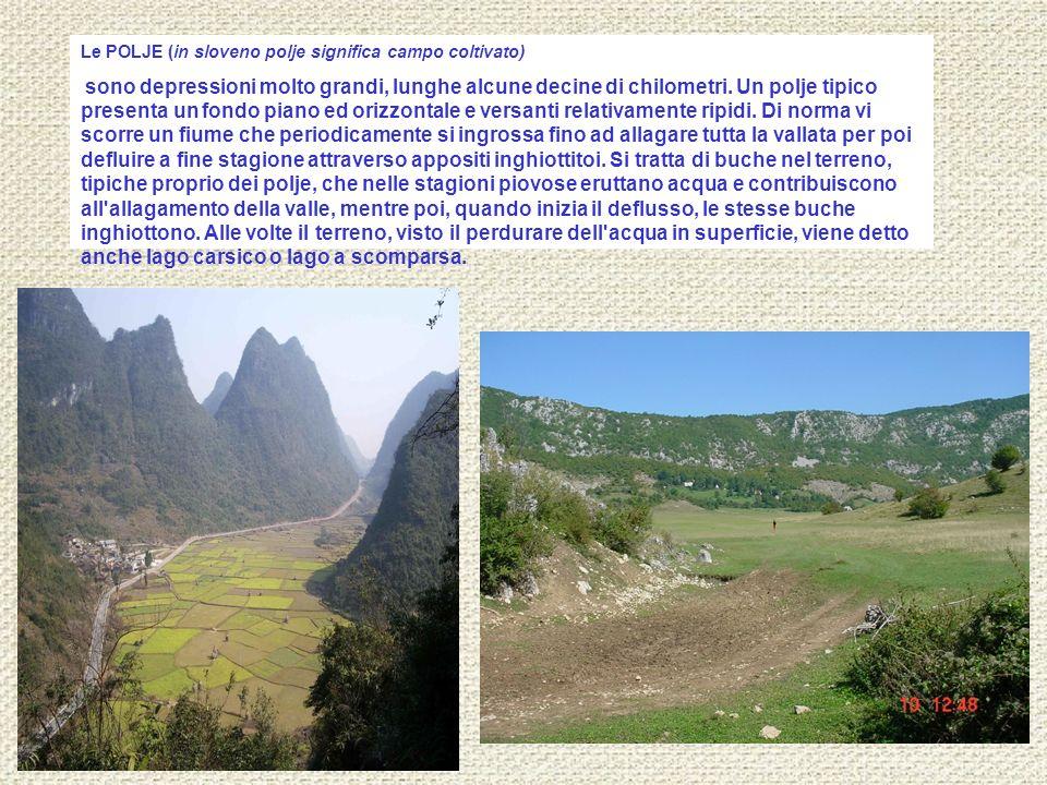 Le POLJE (in sloveno polje significa campo coltivato)