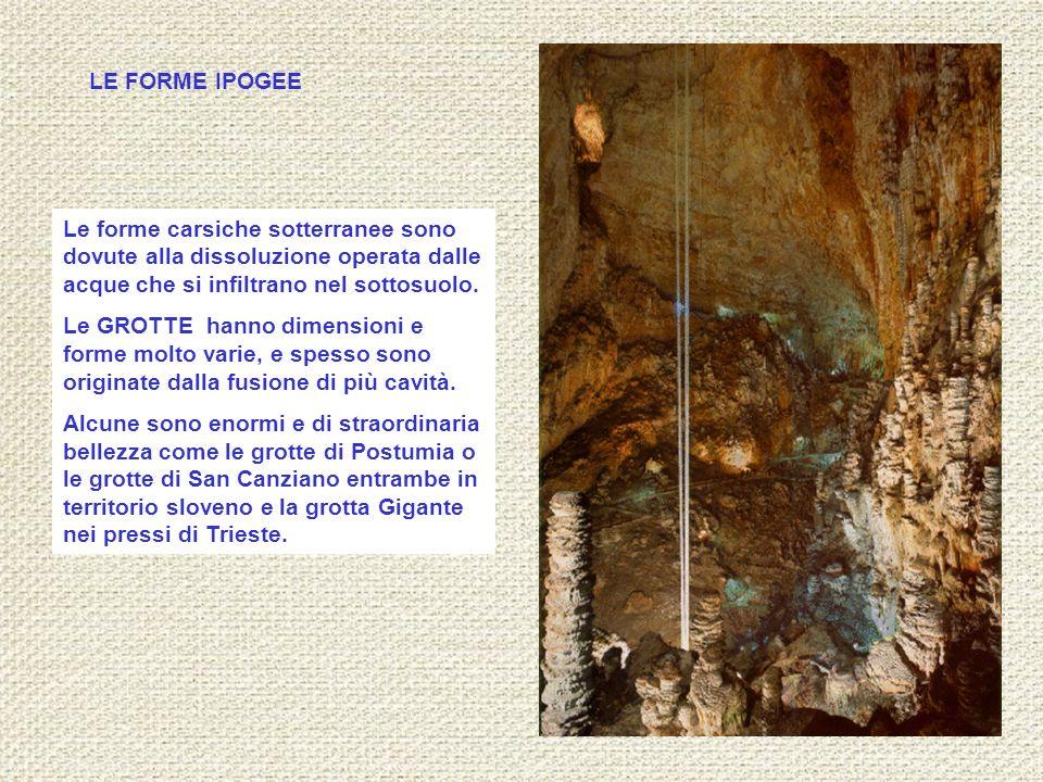 LE FORME IPOGEE Le forme carsiche sotterranee sono dovute alla dissoluzione operata dalle acque che si infiltrano nel sottosuolo.