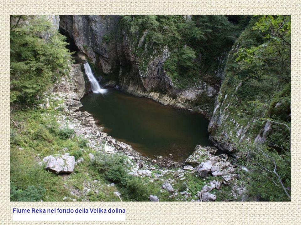 Fiume Reka nel fondo della Velika dolina