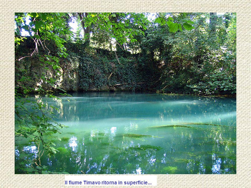 Il fiume Timavo ritorna in superficie...