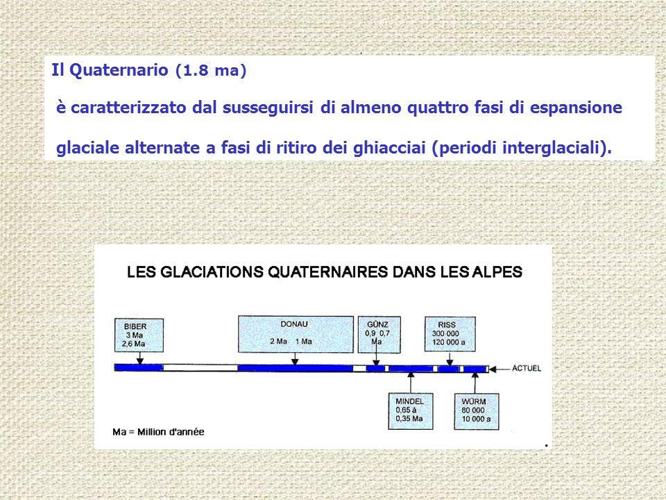 Il Quaternario (1.8 ma) è caratterizzato dal susseguirsi di almeno quattro fasi di espansione.