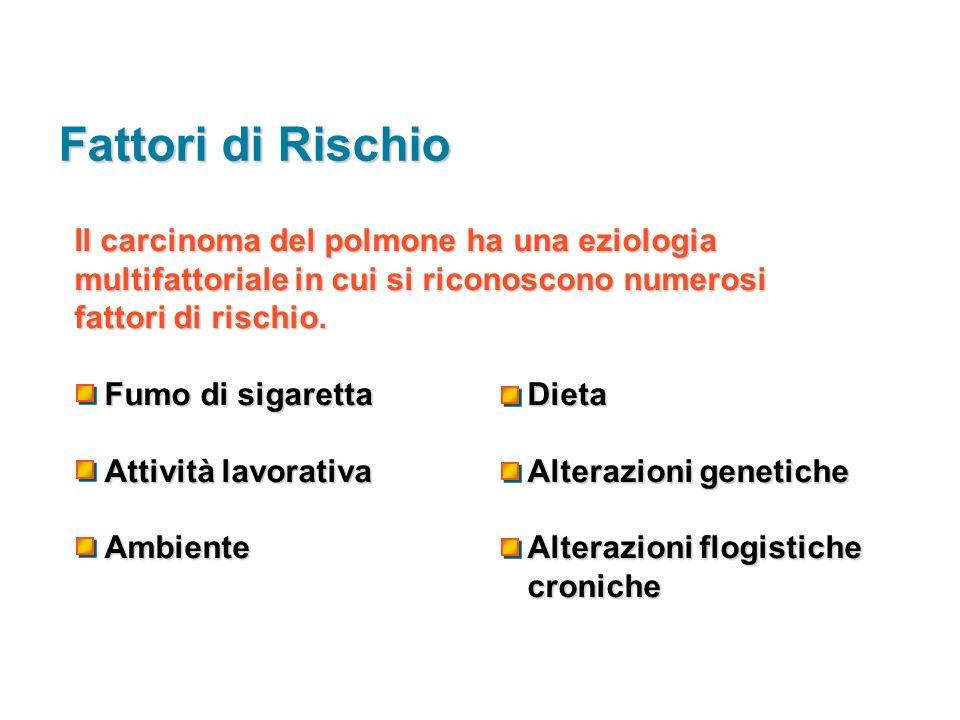 Fattori di Rischio Il carcinoma del polmone ha una eziologia multifattoriale in cui si riconoscono numerosi.
