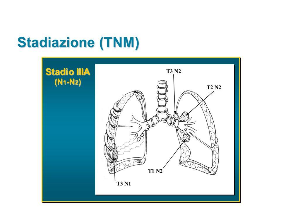Stadiazione (TNM) Stadio IIIA (N1-N2)
