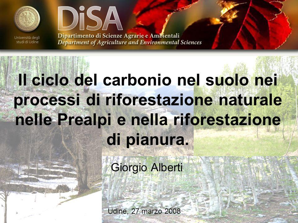 Il ciclo del carbonio nel suolo nei processi di riforestazione naturale nelle Prealpi e nella riforestazione di pianura.