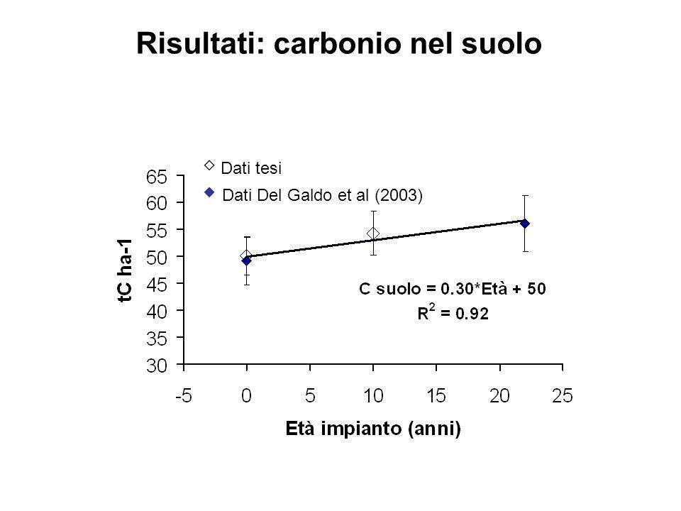 Risultati: carbonio nel suolo