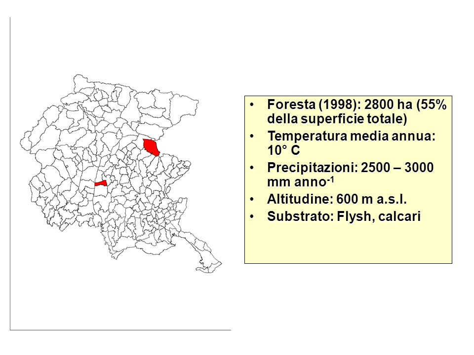 Foresta (1998): 2800 ha (55% della superficie totale)
