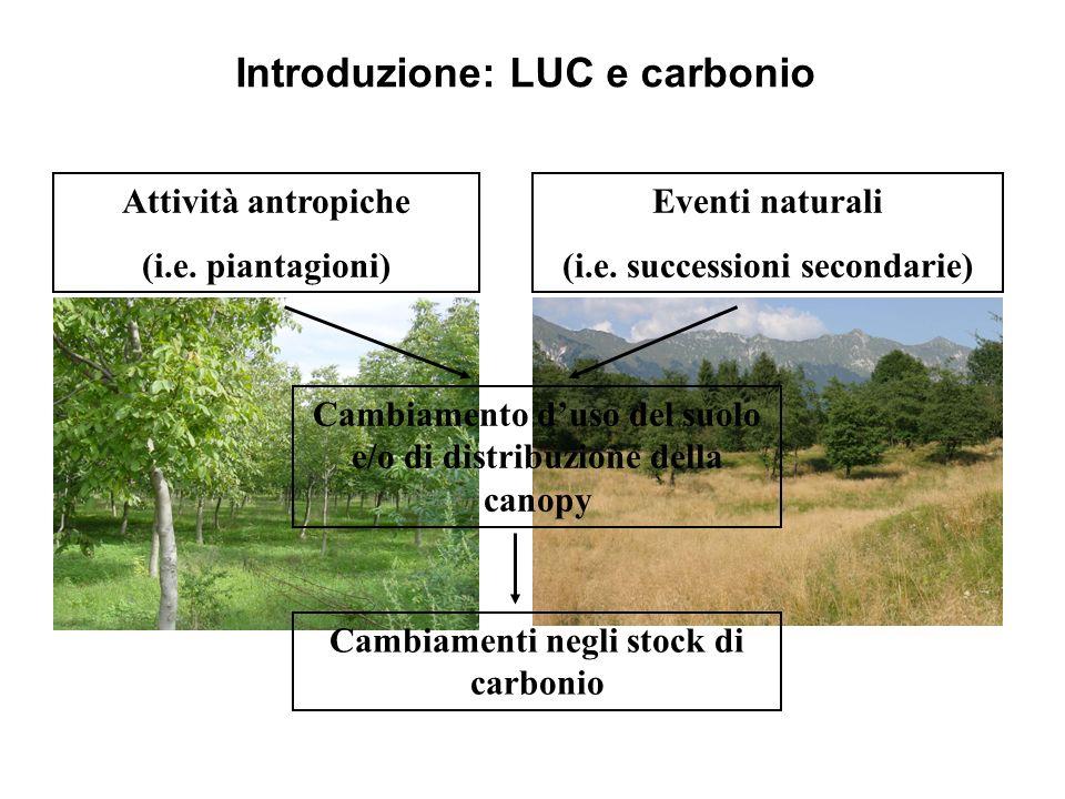 Introduzione: LUC e carbonio