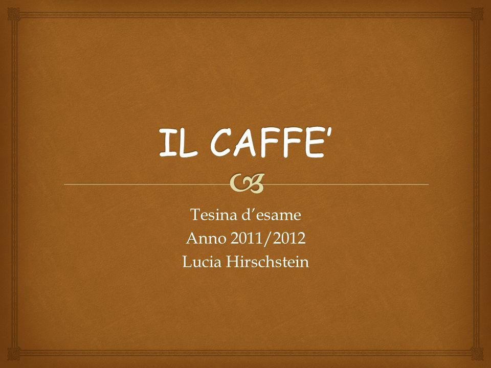 Tesina d'esame Anno 2011/2012 Lucia Hirschstein