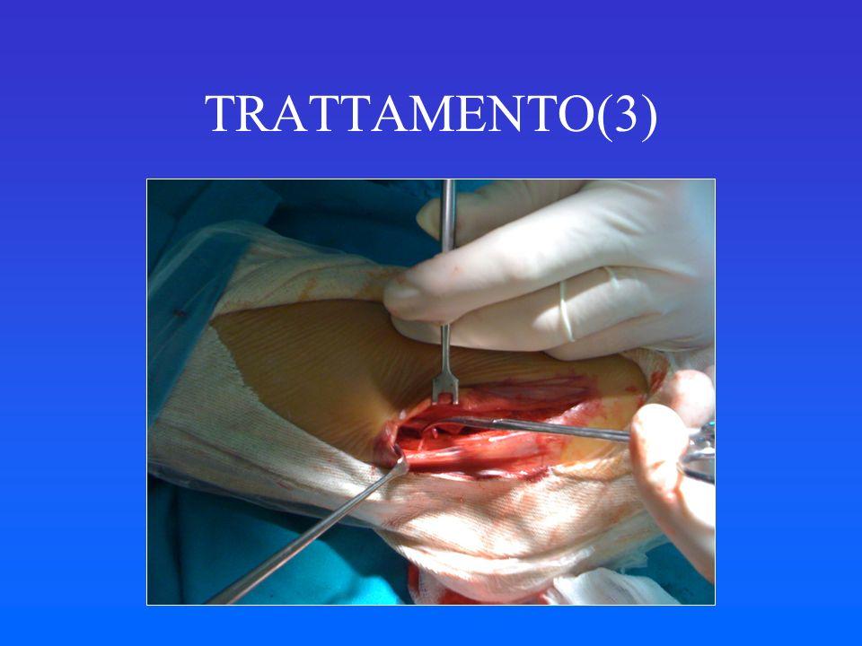 TRATTAMENTO(3)