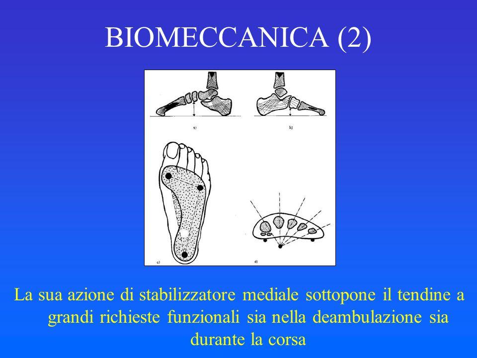 BIOMECCANICA (2)
