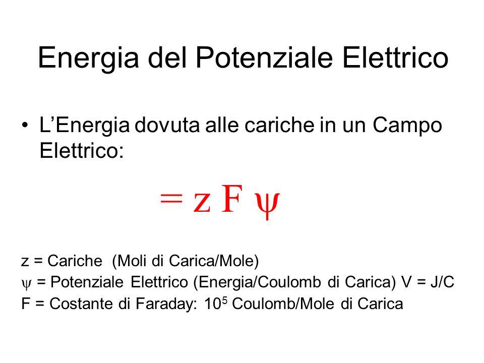 Energia del Potenziale Elettrico