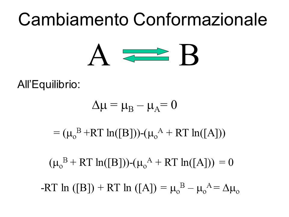 A B Cambiamento Conformazionale Dm = mB – mA= 0 All'Equilibrio: