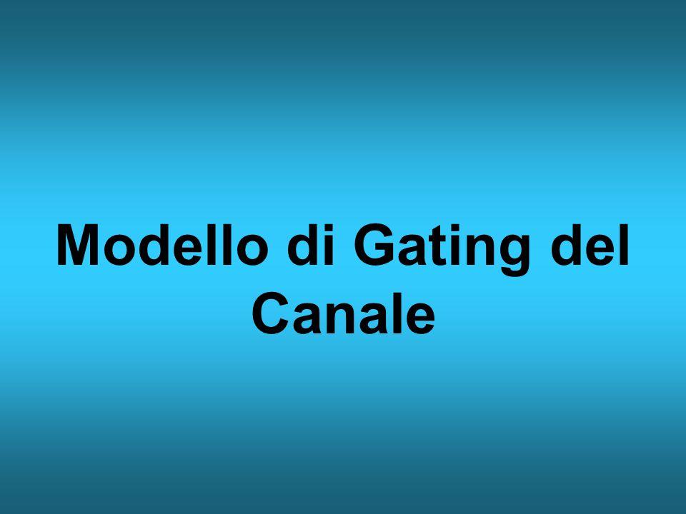 Modello di Gating del Canale