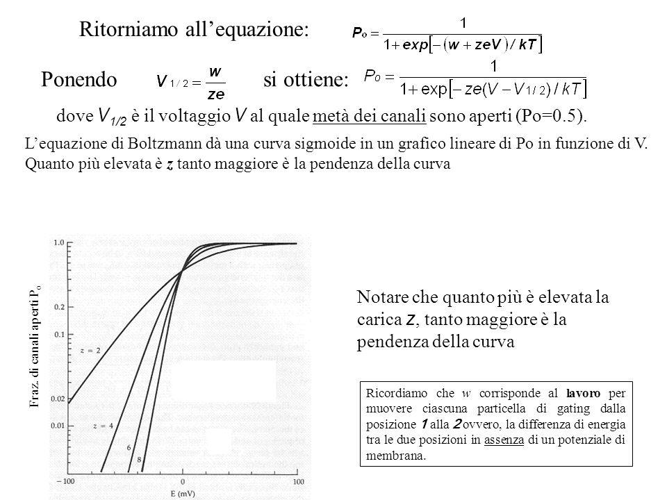 Ritorniamo all'equazione:
