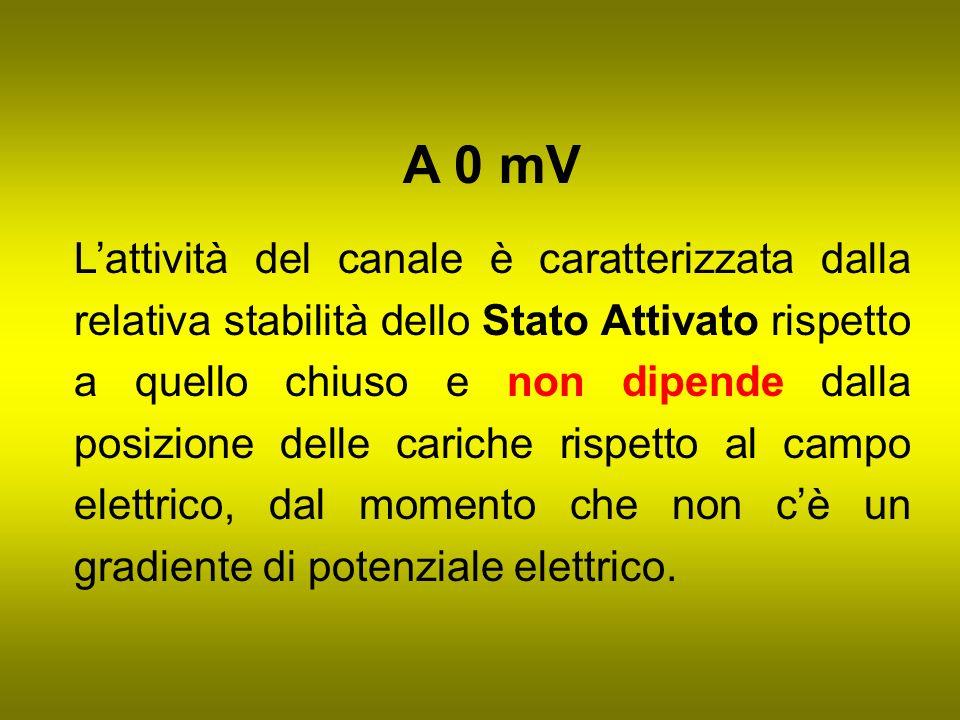 A 0 mV