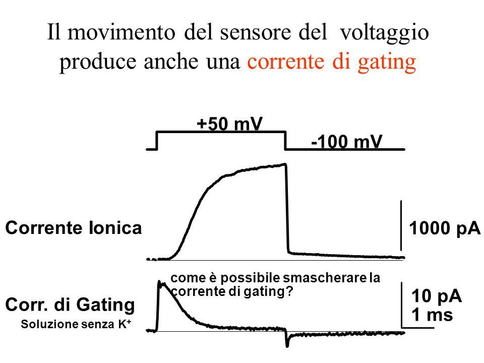 Il movimento del sensore del voltaggio produce anche una corrente di gating