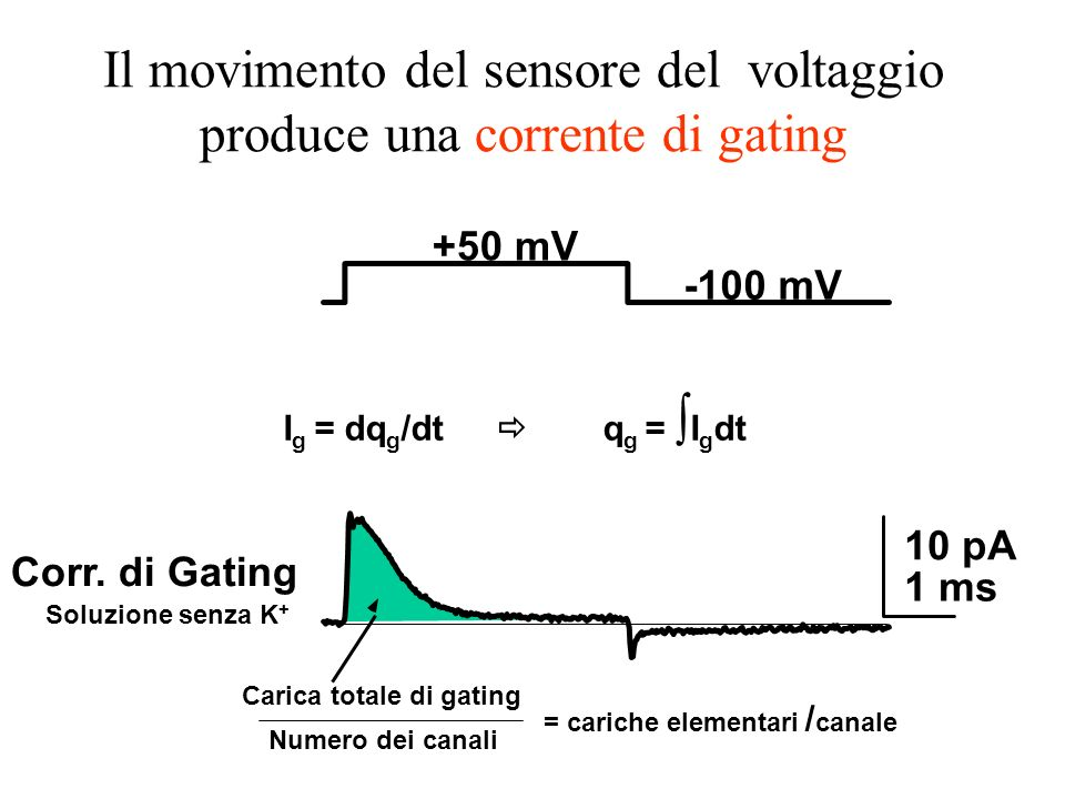 Il movimento del sensore del voltaggio produce una corrente di gating