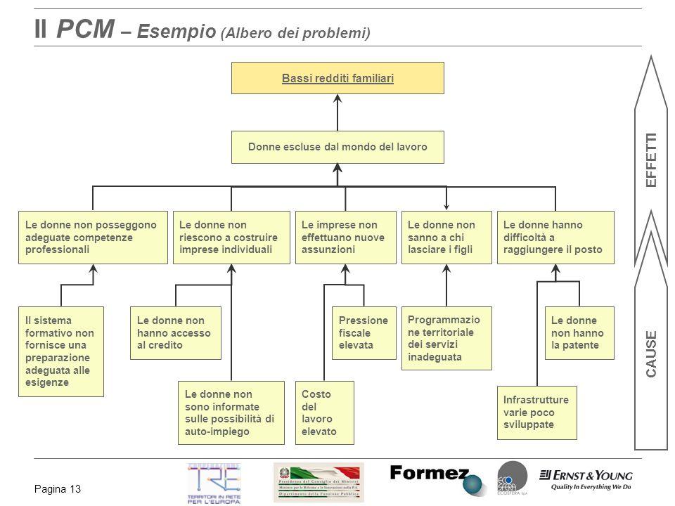 Il PCM – Esempio (Albero dei problemi)