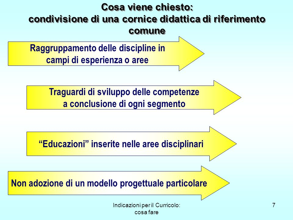 Raggruppamento delle discipline in campi di esperienza o aree